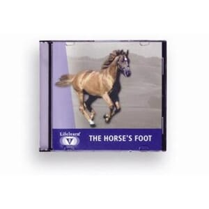 CD The Horses Foot