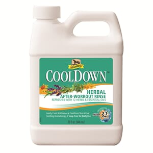 Cool Down Absorbine
